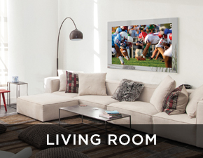 Electric Mirror residential projects Living Rooms
