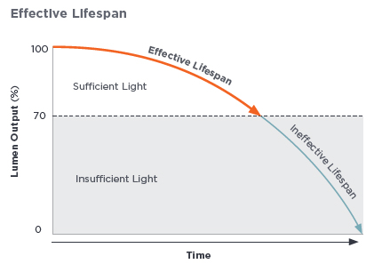 Effiective lifespan infographic