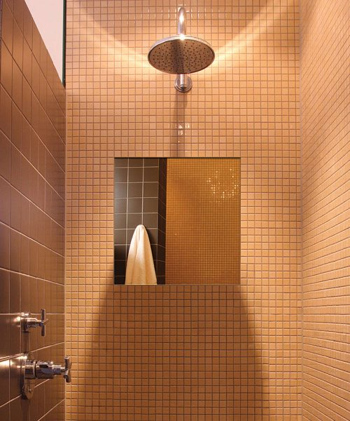 In Shower Fog Free Mirrors